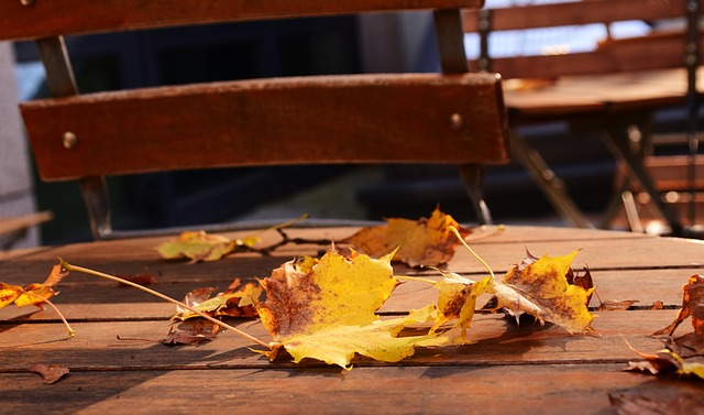 Embellir son jardin en automne