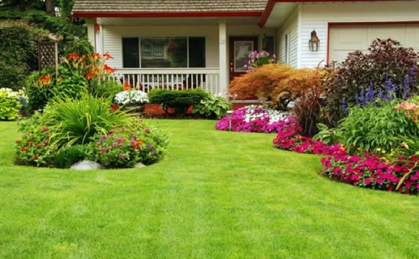 aménager son jardin