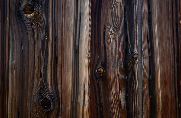 texture du bois de vieux chêne